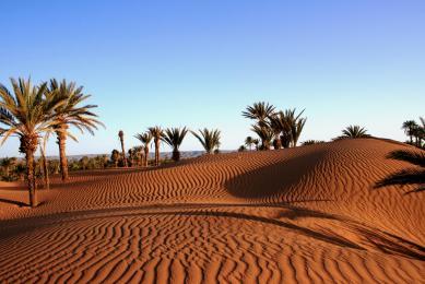 randonnée chamelière sud marocain