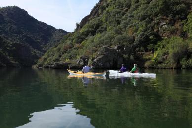 découverte kayak portugal