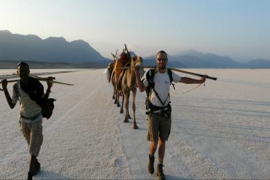 Djibouti - dromadaires sur la banquise - lac Assal