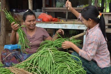 Voyage randonnée Birmanie