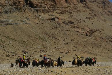 Trekking Tibet Khora pelerinage Mont Kailash