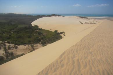 Voyage safari Mozambique découverte
