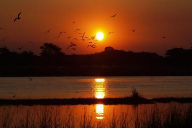 zambie zimbabwe zambèze et safari