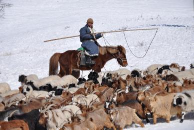 Transsibérien voyage en train traversée Mongolie Russie hiver découverte