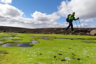 Trek dans le parc naturel du Lonsoraefi en Islande