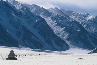 Paysages hivernaux du Ladakh