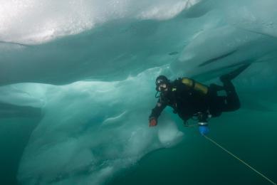 Plongée sous les glaces du lac Baïkal