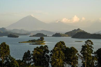 Voyage faune ouganda rwanda