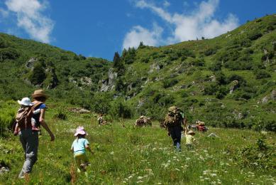 randonnées avec mules de bât en savoie