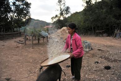 Voyage trek au Laos