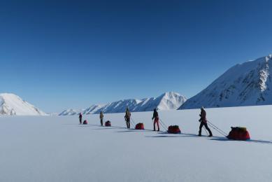 raid ski pulka Spitzberg ours polaire