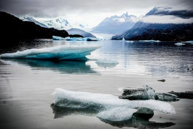 patagonie chili voyage nature navigation torres del paine condors bateau baleines