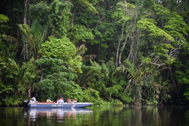 Voyage photo nature Costa Rica parc national Corcovado