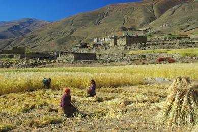 Voyage Népal hors des sentiers battus trek