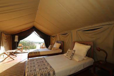safari serengeti tanzanie