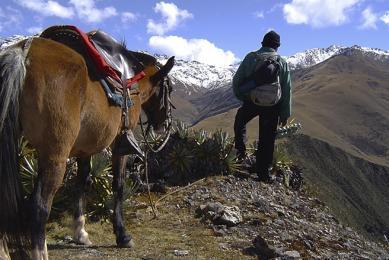 Mule et porteur sur le Trek du Camino Inca, Pérou