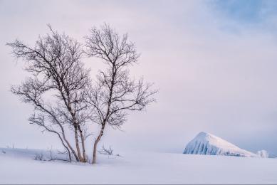 voyage photo pour photographes à la recherche d'aurores boréales en Norvège dans le cercle polaire