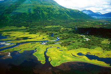 Alaska lacs nature sauvage voyage observation animalière randonnée