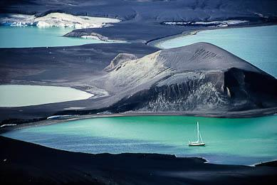 voyage aventure Antarctique terres polaires observation faune