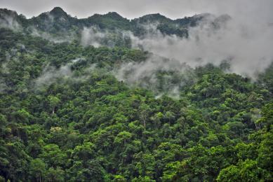 Voyage authentique Vietnam trekking randonnée
