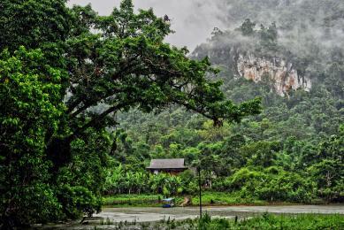 Voyage découverte Vietnam rencontres immersion