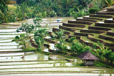 randonnée Bali