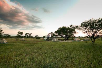 voyage exploration afrique botswana désert