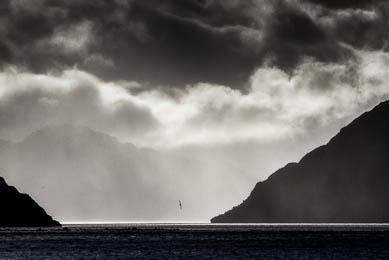 Patagonie chili argentine exploration navigation darwin faune observation trek trekking detroit de magellan baleines