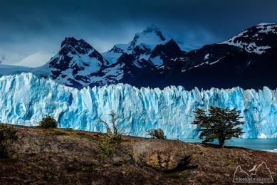 Patagonie voyage photo Cerro Fitz Roy Torres Paine Perito Moreno estancia