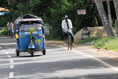 Voyage Sri Lanka en famille