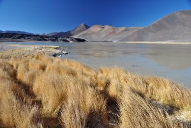 Exploration Atacama argentine cordillère andes Trek randonnée trekking exploration atacama uyuni bolivie