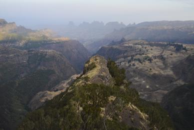 voyage photographie nature faune ethiopie