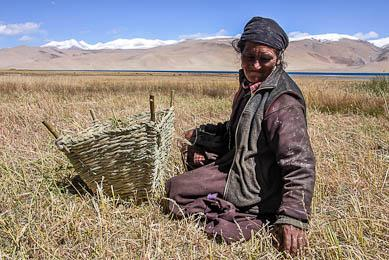 Inde Ladakh immersion culturelle vallée Rupshu