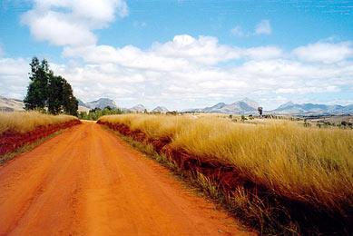 Voyage Madagascar sud Andringitra