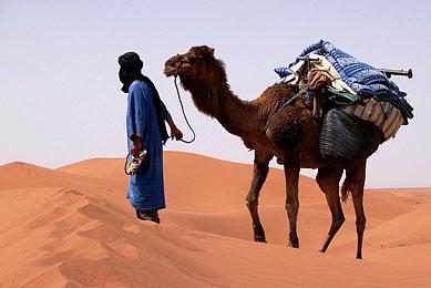 Maroc méharée désert sud