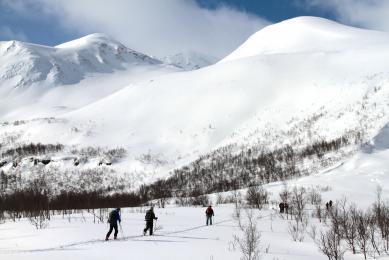 """""""Ski de randonnée"""" """"Ski de rando"""" Norvège """"Alpes de Lyngen"""""""