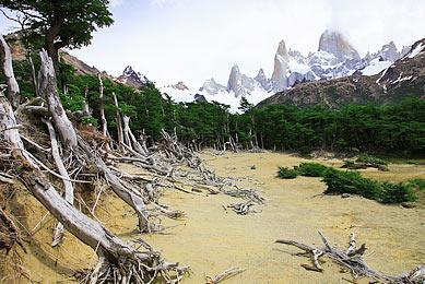 Traversée Lago del Desierto découverte Fitz Roy  Patagonie trek Chili Argentine