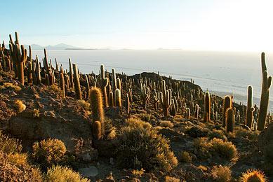 Lac Titicaca Trekking Bolivie Pérou Exploration