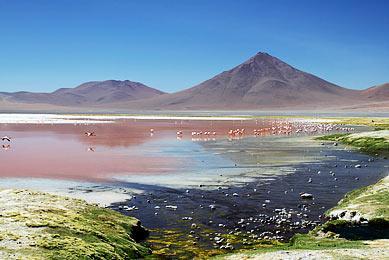 Laguna Bolivie Chili Trek Salar Atacama