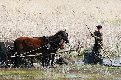 Voyage naturaliste Roumanie montagnes des Carpates faune flore