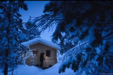 voyage en laponie en hiver, découverte de la laponie l'hiver avec les aurores boréales et du chien de traineau